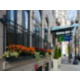 Holiday Inn Express Chicago Magnificent Mile Exterior