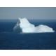 Iceberg Credit to NL Tourism
