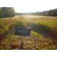 Fredericksburg Battlefield