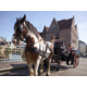 Horse carriage tour in the medieval Gent city center (4km)