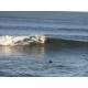 Surfing at Pismo Beach