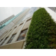 Holiday Inn Express Hong Kong Soho, Green Wall of Hotel Exterior