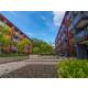 Holiday Inn Express Phuket Patong Beach Central Garden