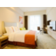 Holiday Inn Express Shanghai Gongkang One Queen Bed Suit Room