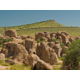 Our Silver City hotel is the closest to City of Rocks State Park