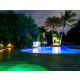Tropically Landscaped Swimming Pool