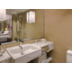 Executive Club Room Bathroom
