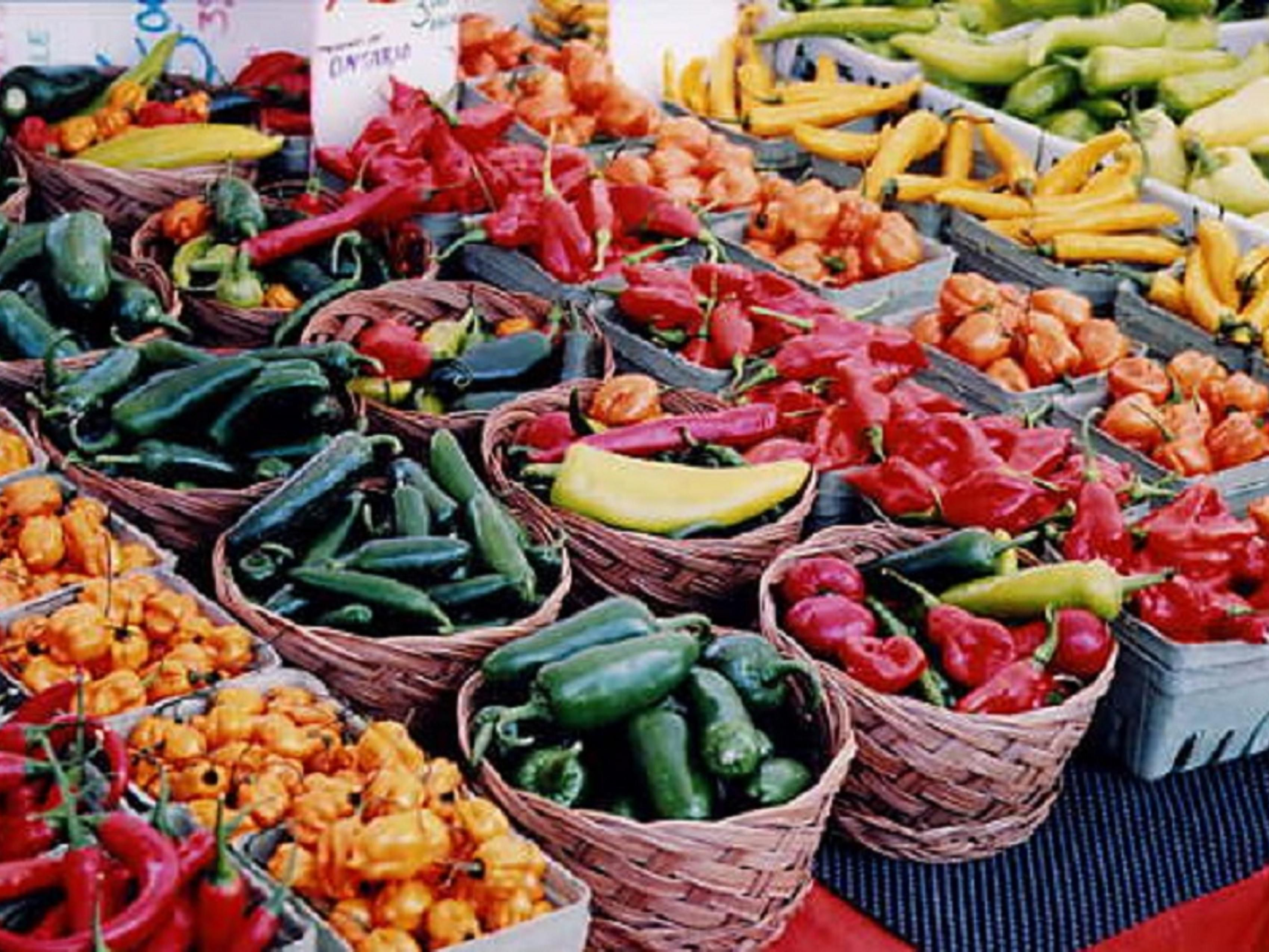 Farmer's Market every Thursday and Saturday
