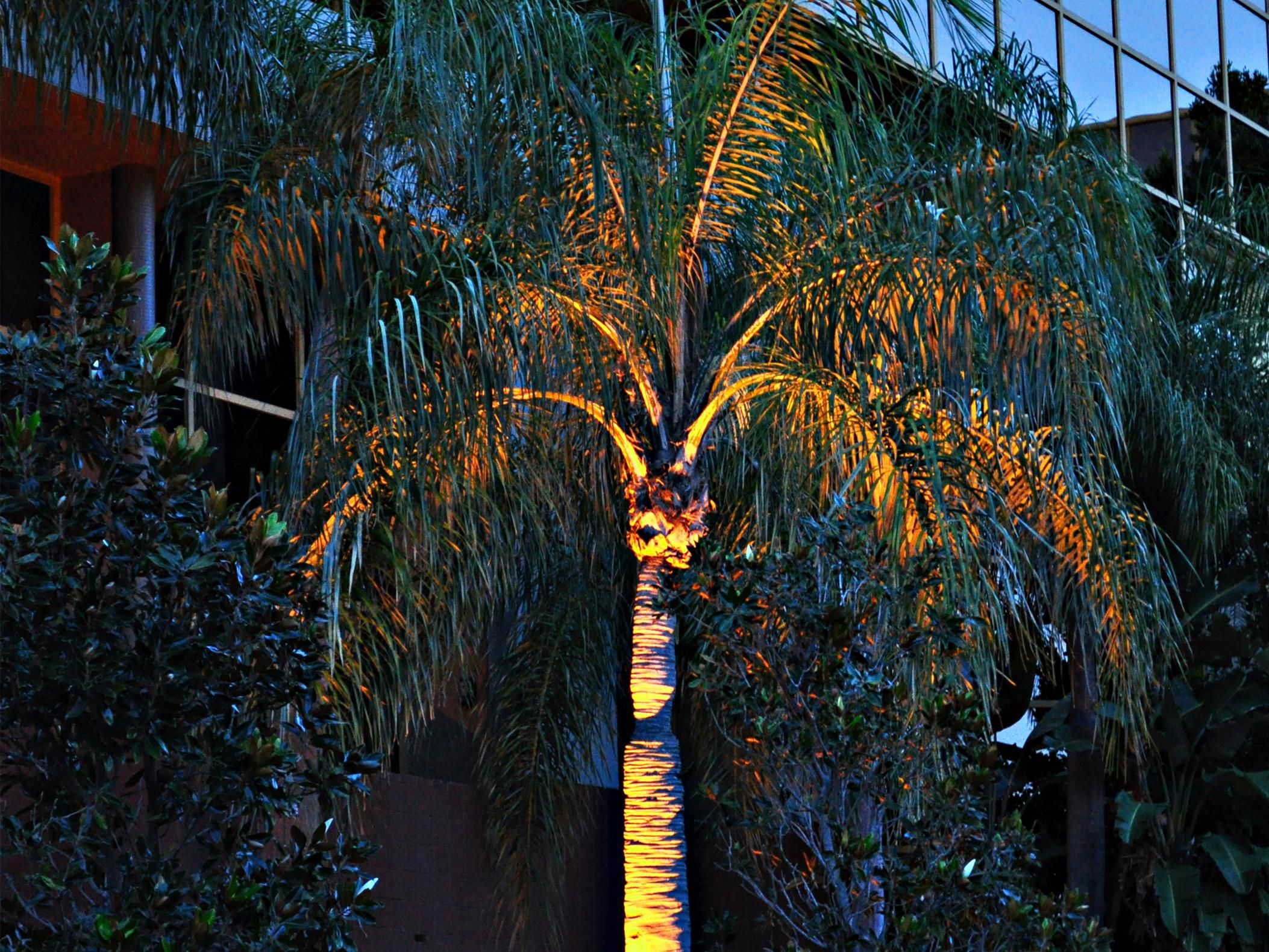 Exterior view of the hotel grounds during a Ft. Lauderdale Dusk