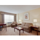 King Executive Suite-large sitting area