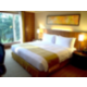 1 King Bed Deluxe Suite Non Smoking