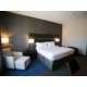 Luxurious King Standard Guest Room