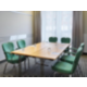 Host your business conference in our Birke Meeting Room