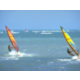 Holiday Inn Miami Beach Oceanfront wind surfing