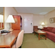 Premium Queen Mini Suite