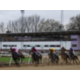 Horse Racing Course in Neuss, Pressearbeit Stadt Neuss