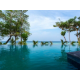 Coral Wing Infinity pool overlooking the sea