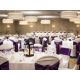 Holiday Inn Rock Island - Quad Cities - Ballroom 2