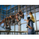 Western Wyoming College hosts amazing dinosaur exhibits