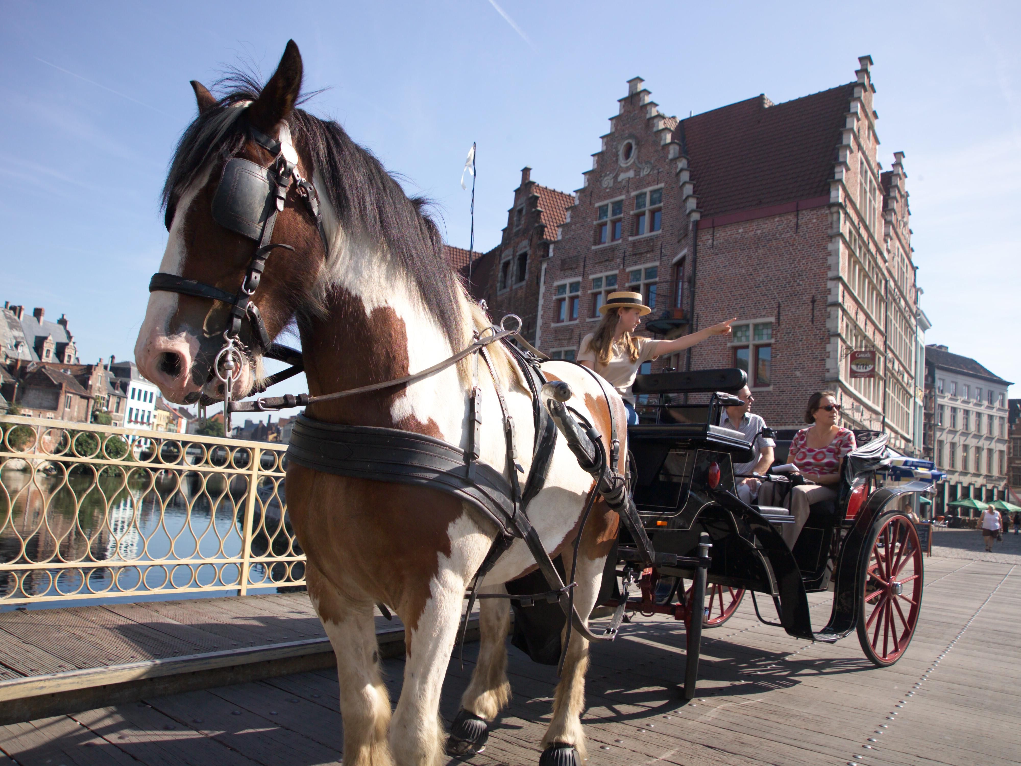 Enjoy a carriage tour in Gent