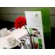 Discover the Brasserie Restaurant & Terrace and enjoy Breakfast