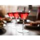 Beverege Selection at our modern Chi Bar