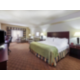 King Executive Bed Mini Suite