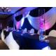 Head Table - Wedding Reception