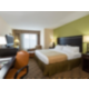 ADA/Handicapped accessible King Leisure Guest Room