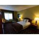 Wheelchair Accessible Guest Room - Holiday Inn Swedesboro