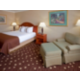 King Bed Guest Room - Holiday Inn Philadelphia South Swedesboro
