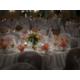 Lovely Weddings at the Holiday Inn Philadelphia South Swedesboro