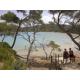 Discover the path coastline beaches