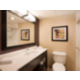 King Feature Guest Bathroom