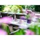[a]dress garden terrace