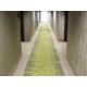 Hotel Indigo Traverse City Guest Room Corridors