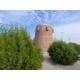 Al Tuwayah Tower In Al Jubail