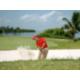 골프 코스