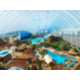 Dome Panoramic View