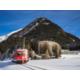 InterContinental Davos RHB Train