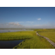 Scenario/Paesaggio