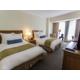 Twin Bed Club Executive