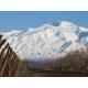 Winter in Mendoza