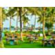 Cabana - Beach Restaurant & Bar Outside Area