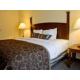 Single Bed Guest Room--Studio Queen Suite