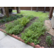Complimentary herb garden for guests