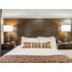 Standard Studio/1 Bedroom Suite w/1 Queen Bed