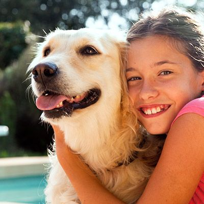 IHG Pet Friendly Hotels