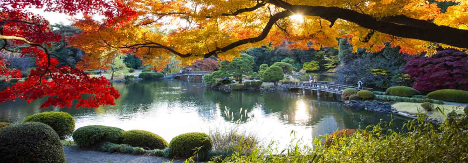Plan your trip to Japan