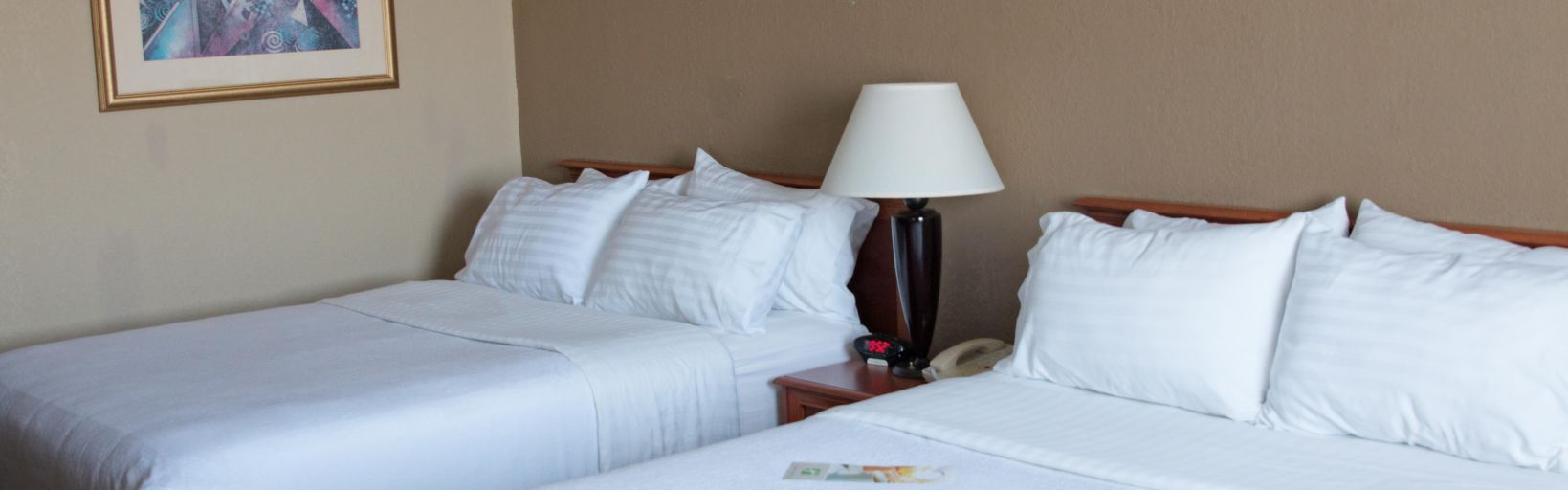 Holiday Inn Alexandria - Room Pictures & Amenities